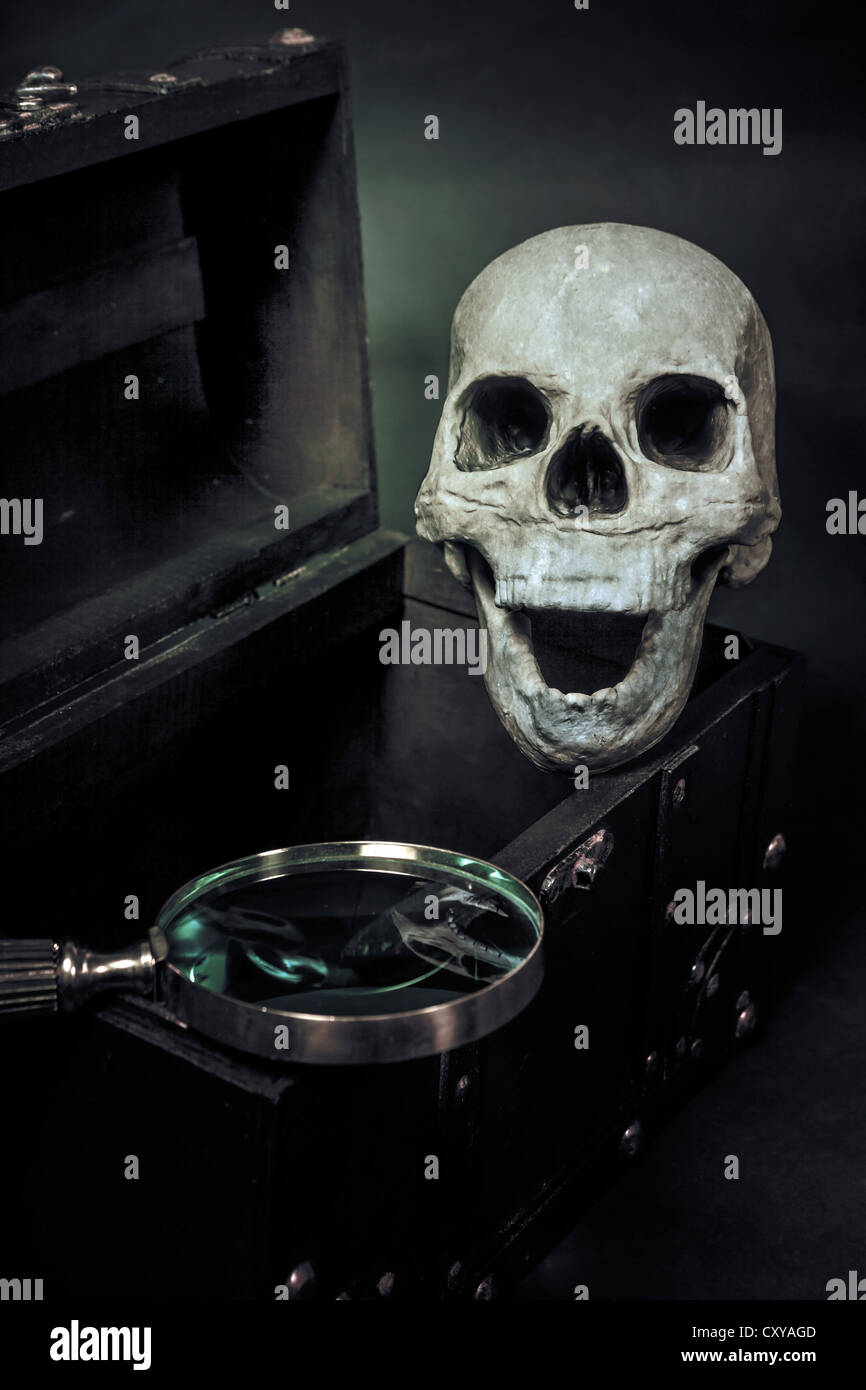 a skull in a chest - Stock Image