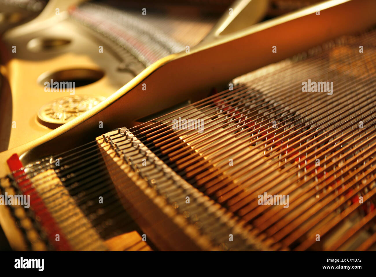 Strings of a piano - Stock Image