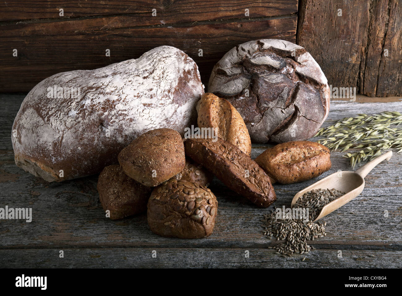 Bread loaves, rolls with rye grain and ears of corn on a rustic wooden surface - Stock Image