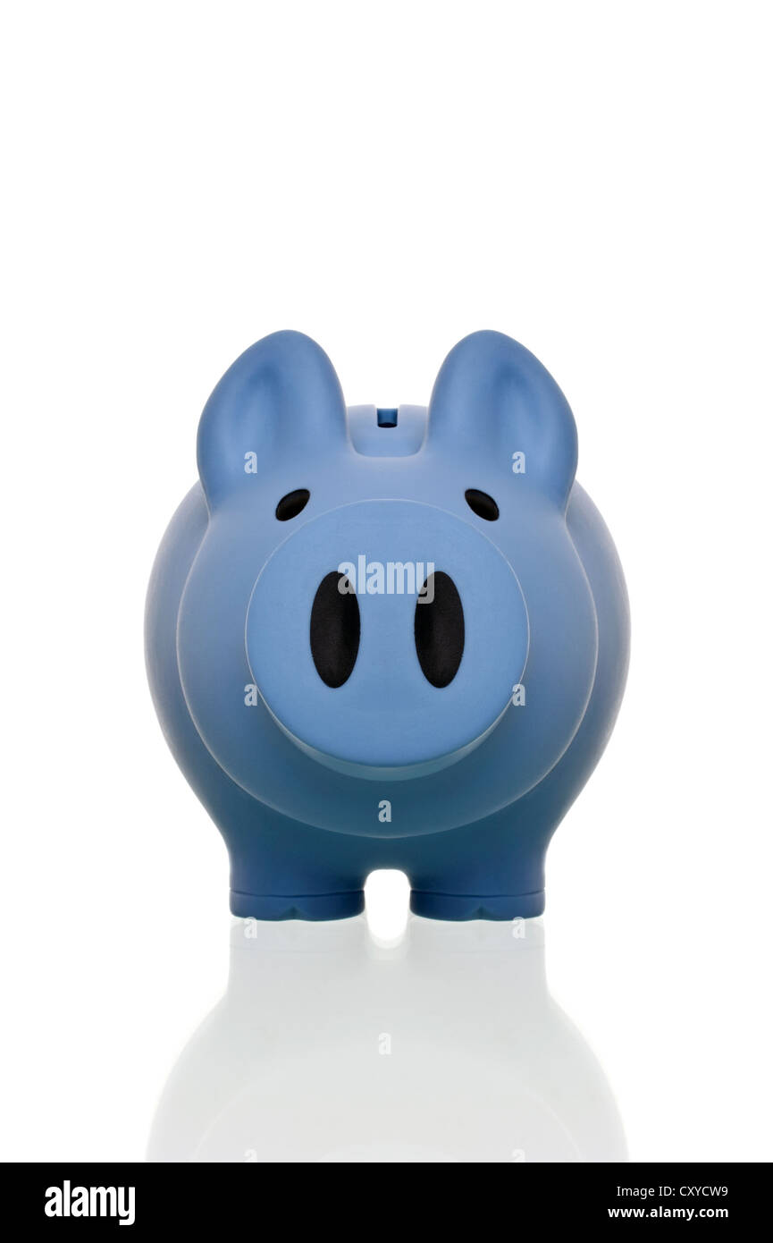 Blue piggy bank from the front - Stock Image