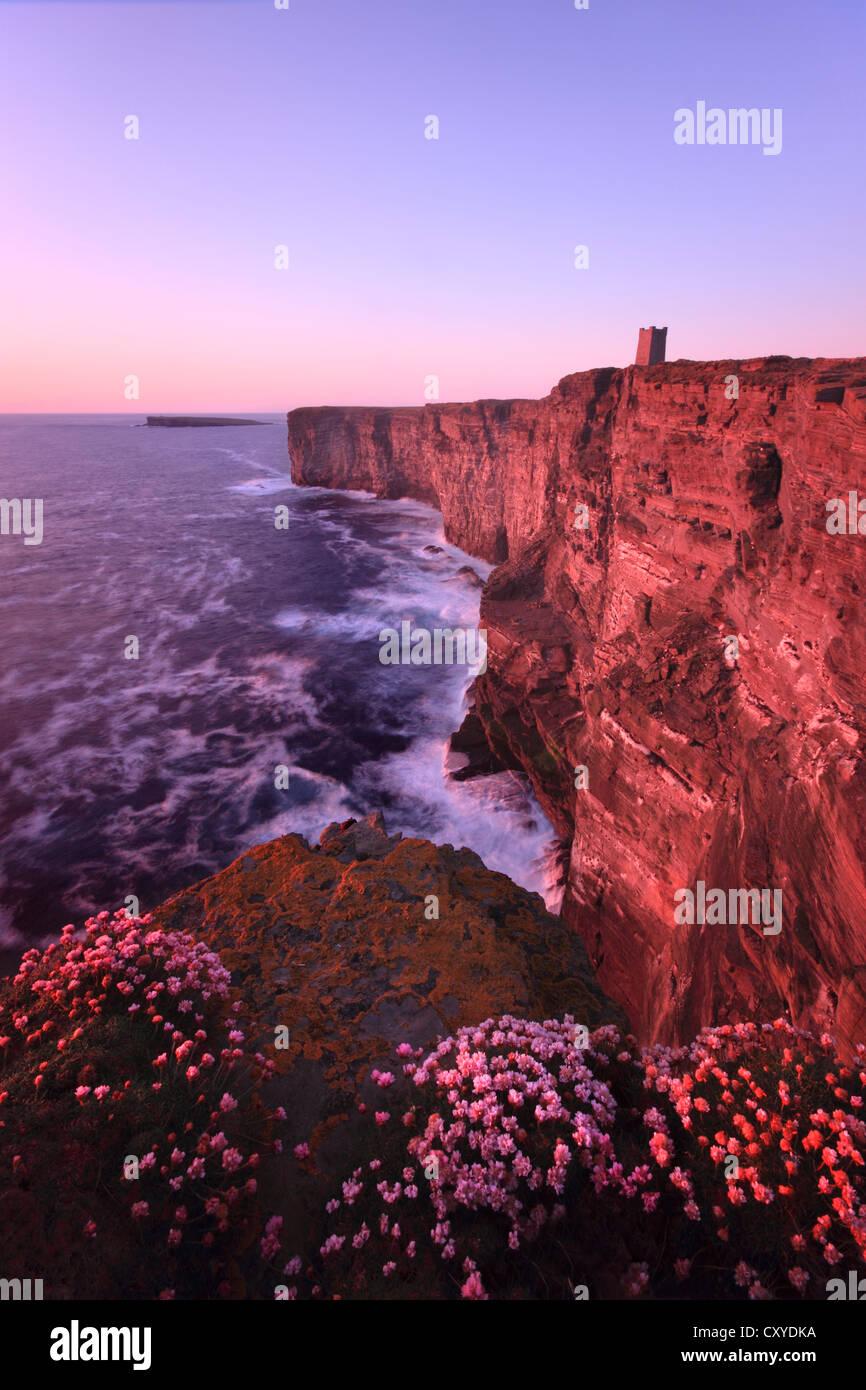 Marwick Head, Orkney isles - Stock Image