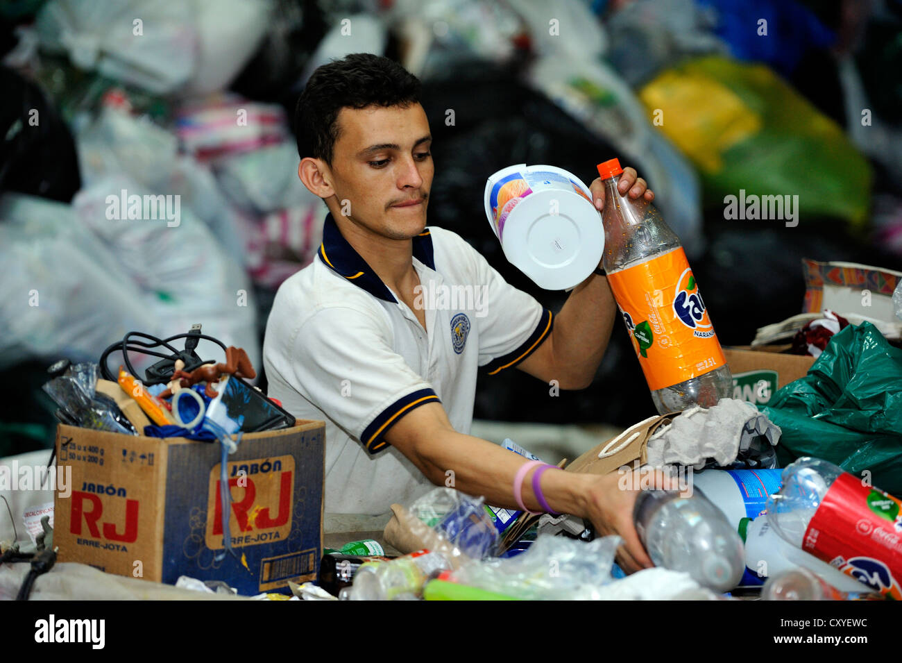Young man sorting recyclables, the medium-sized company of a women's organisation separating rubbish and selling - Stock Image