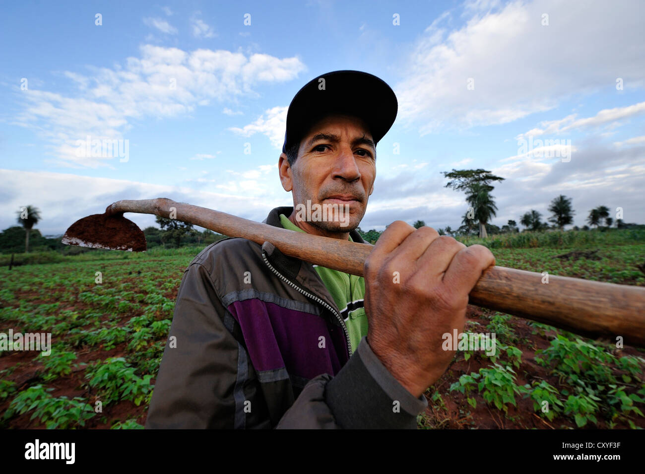 Smallholder carrying a hoe on his field of beans, Comunidad Arroyito, Departamento Concepcion, Paraguay, South America Stock Photo