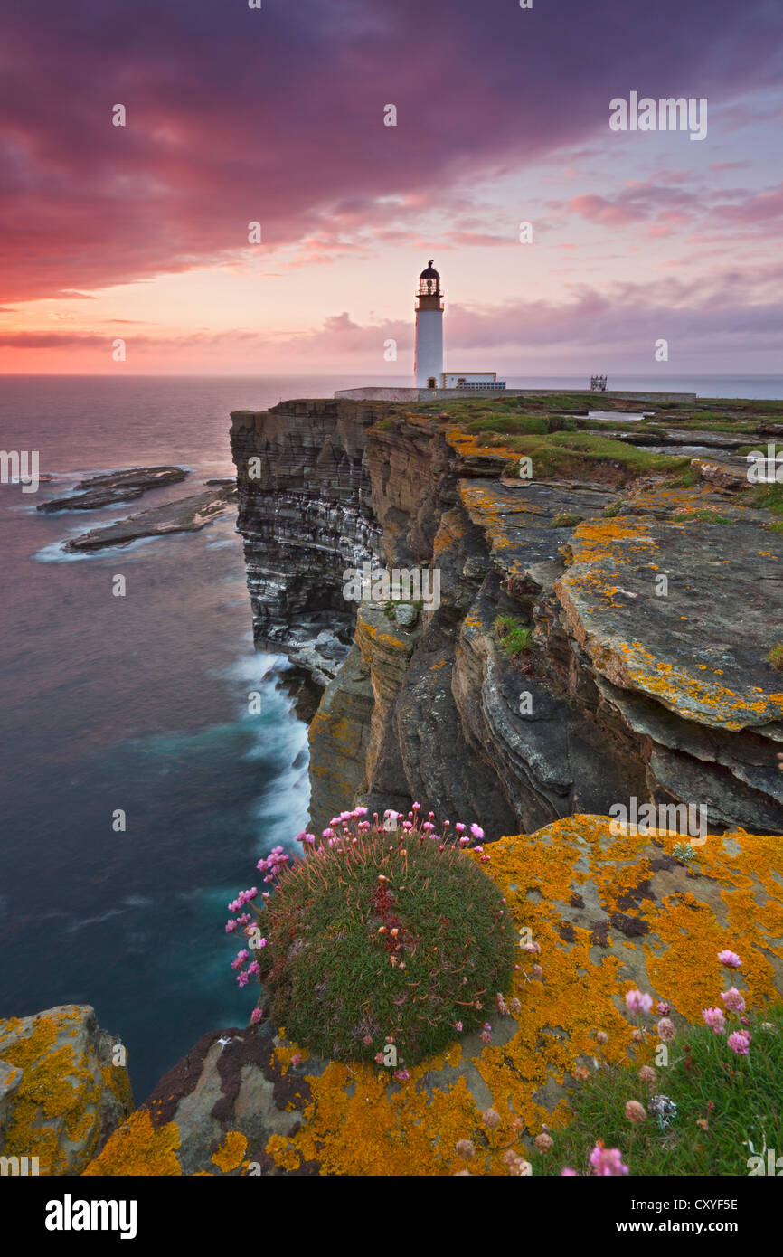Island of  Westray, Noup Head - Stock Image