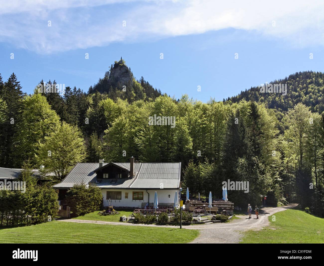 Riederstein mountain, Riedersteinalm alp, Tegernsee valley, Mangfall Mountains, Upper Bavaria, Bavaria - Stock Image