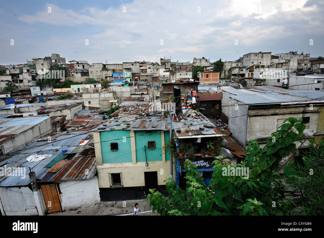Corrugated iron roofs, El Esfuerzo slum, the disrict is controlled by rivalling gangs of youths, Maras, Zona 5, - Stock Image
