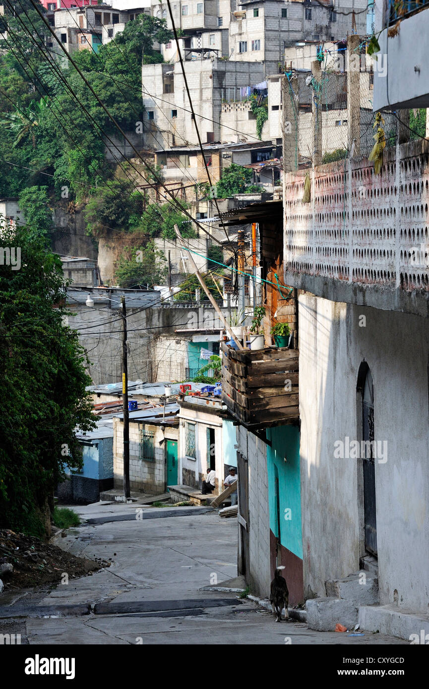 El Esfuerzo slum, the district is controlled by rivalling gangs of youths, Maras, Zona 5, Guatemala City, Guatemala - Stock Image