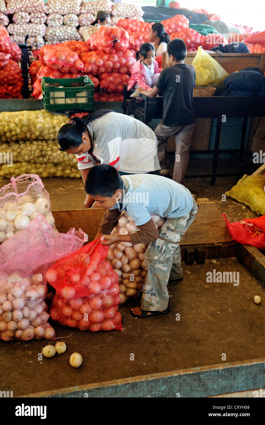 Child labor, boy helping his mother filling and carrying bags of onions, CENMA, vegetable wholesale market in the - Stock Image