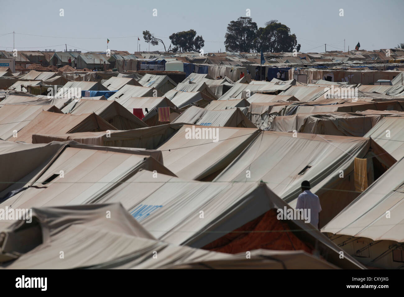 Choucha refugee camp, UN tent city, several thousands of war refugees from Libya and other war zones live under - Stock Image