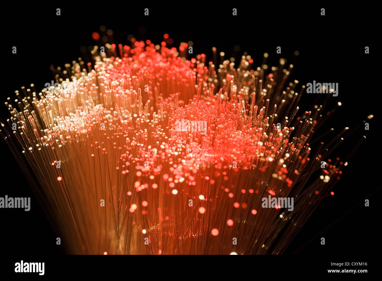 Fibre optics, optical fibers or optical fibres - Stock Image