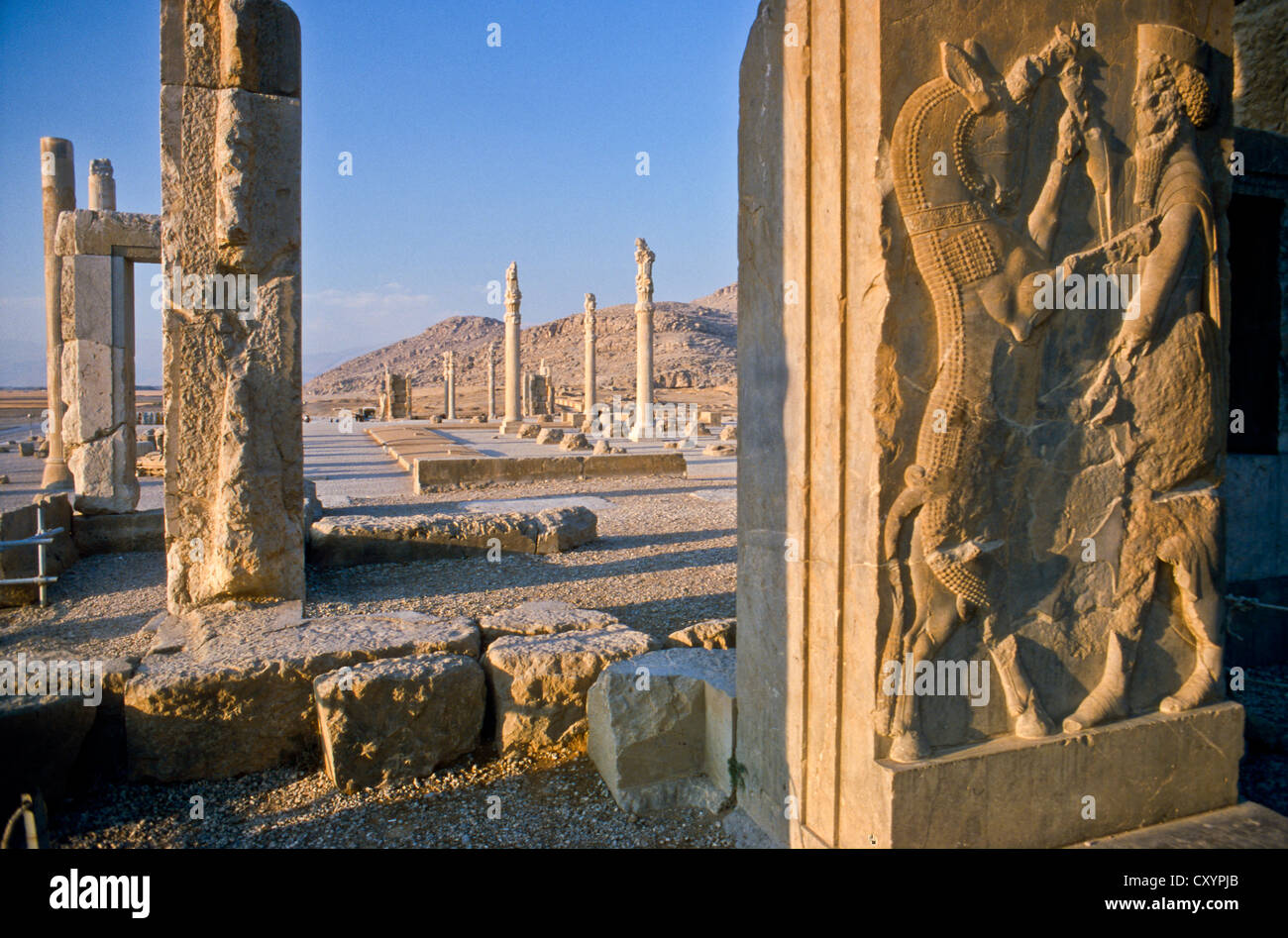 The Remains Of The Hall Of A Hundred Columns Persepolis Shiraz Stock Photo Alamy
