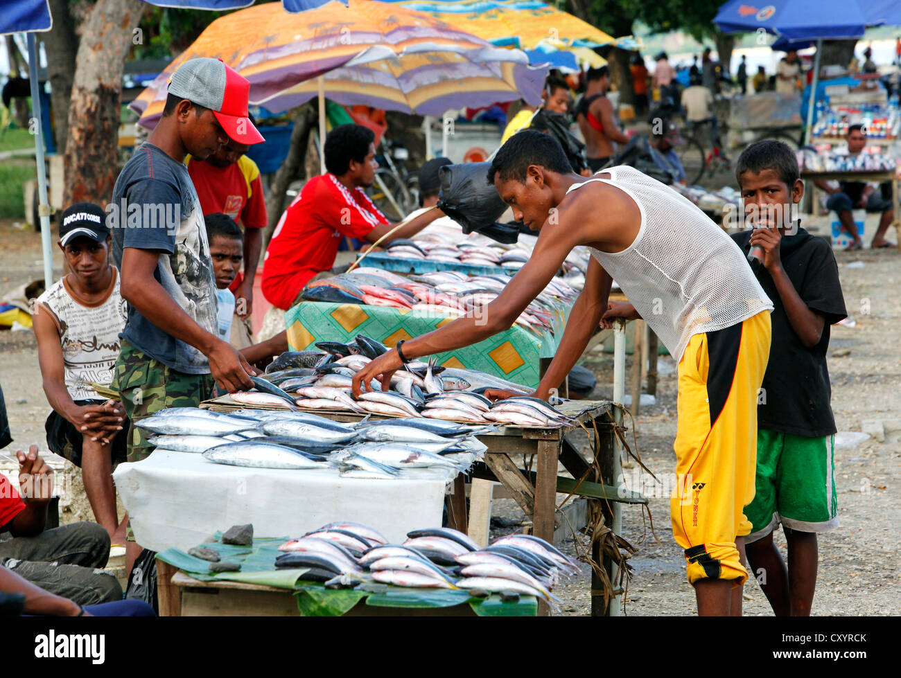 Trader selling fish, Colmera commercial district of Dili, capital of Timor Leste (East Timor) - Stock Image