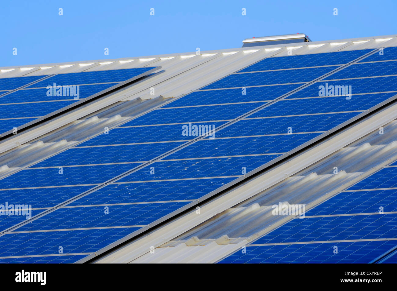 Photovoltaic system, solar cells, solar panels on the roof of a company, North Rhine-Westphalia, PublicGround - Stock Image