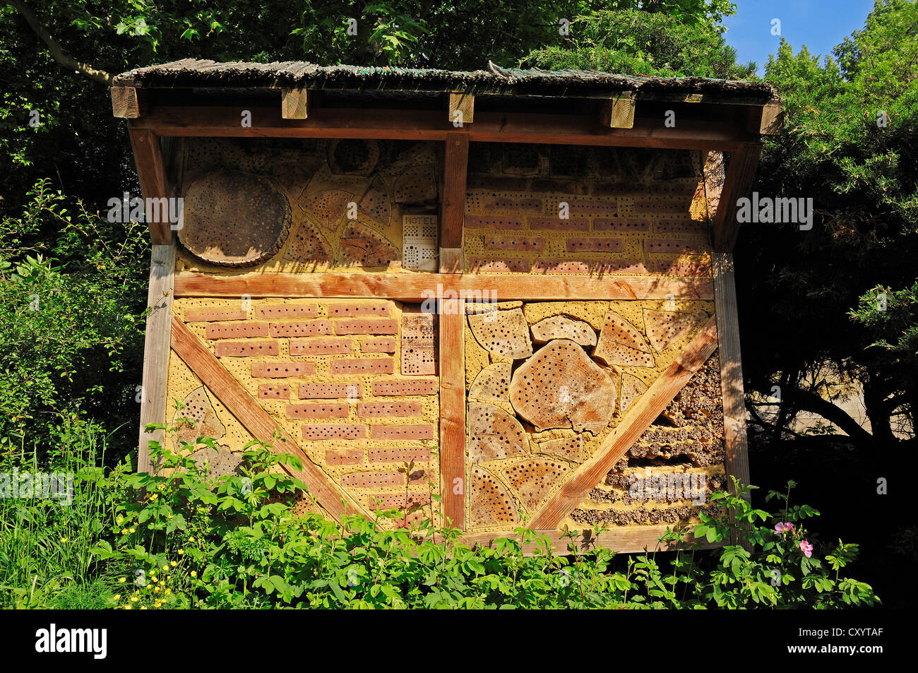 Nesting aid for wild bees and other insects, beehive, insect hotel, North Rhine-Westphalia - Stock Image