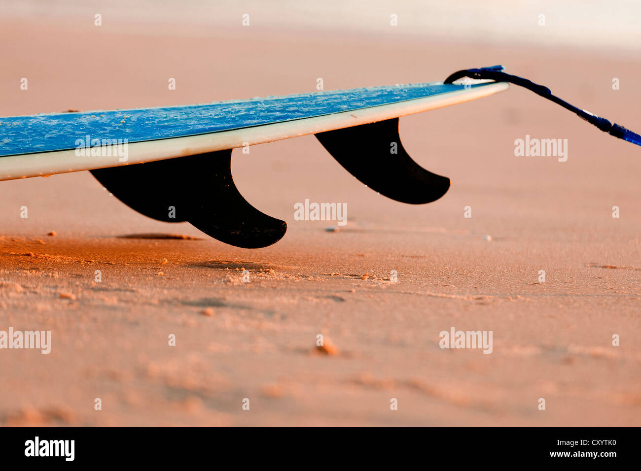 Tail of a surfboard on the sand with three fins - Stock Image