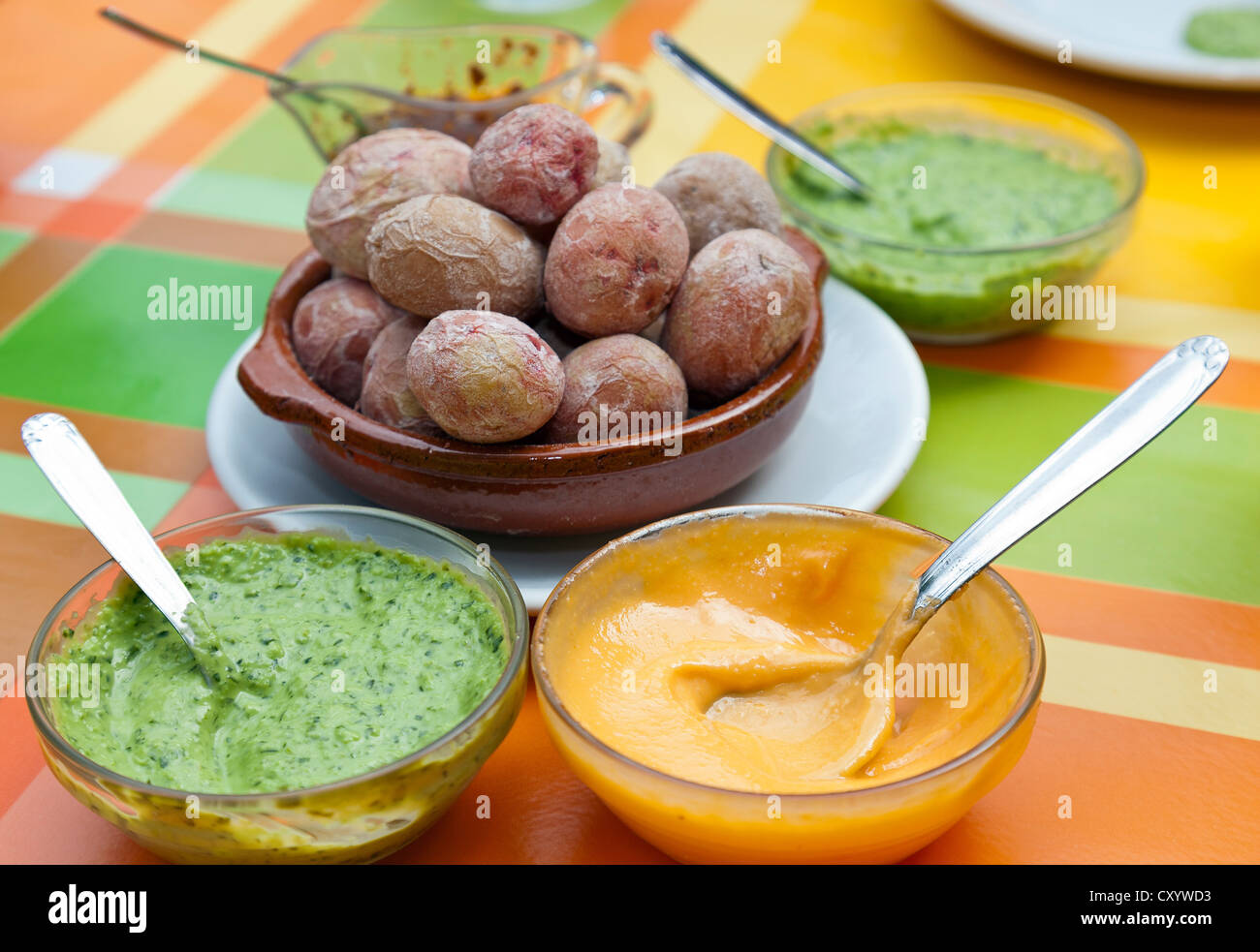 Potatoes with mojo sauce, typical dish from the Canaries, Tenerife, Canary Islands, Spain, Europe - Stock Image