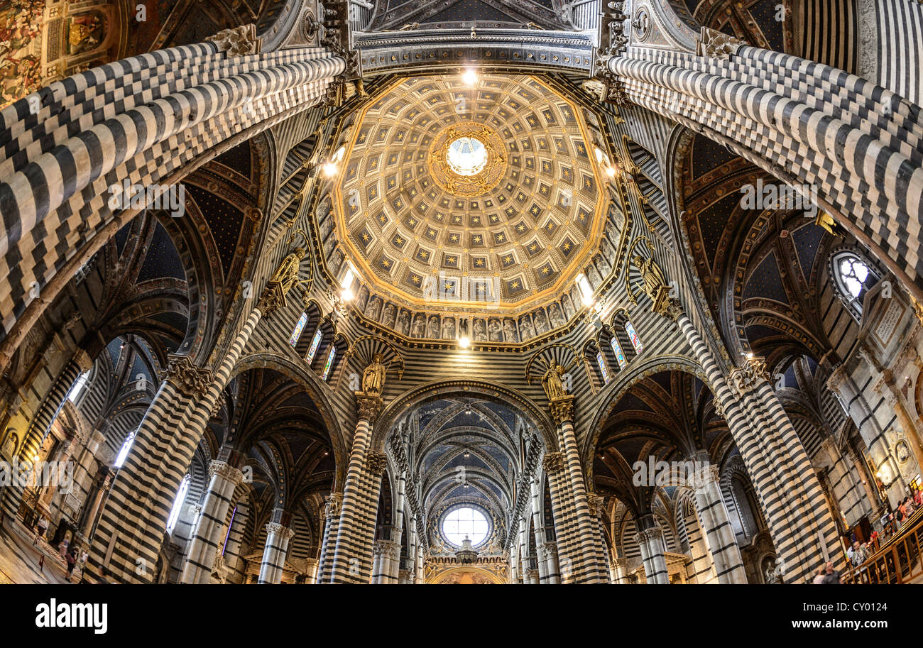 Interior view, dome of the Cathedral of Siena, Cattedrale di Santa Maria Assunta, main church of the city of Siena, Stock Photo