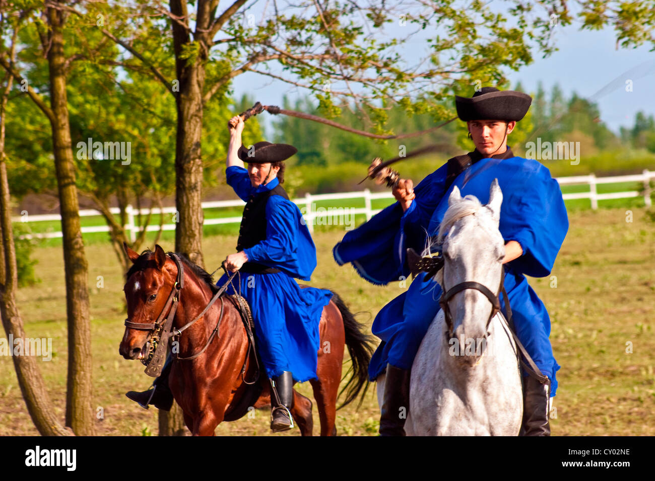 Hungary, Kalocsa, Csikos Hungarian horse riders, demonstrating their prowess with a whip Stock Photo