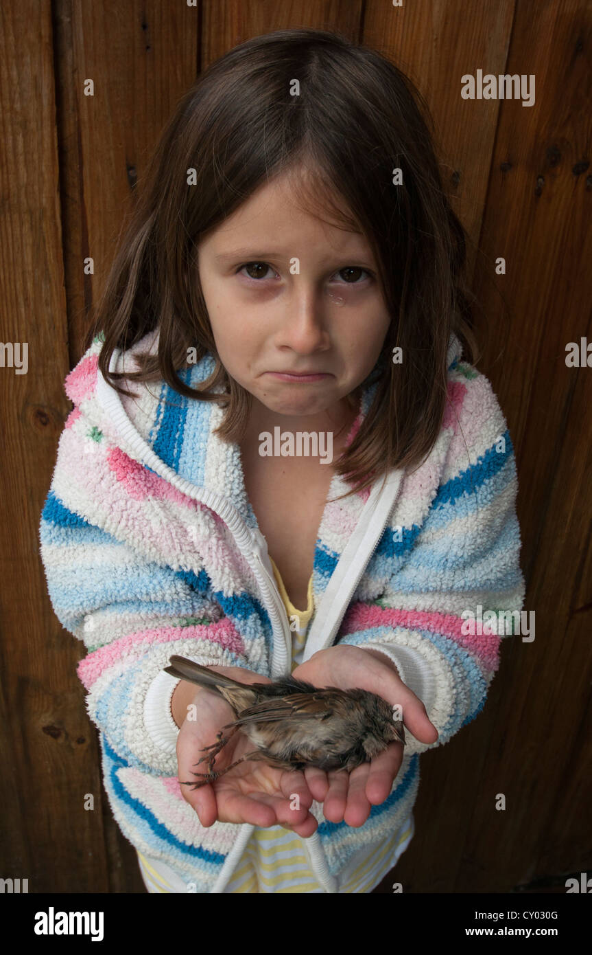 Model Released  Young girl crying as she holds a dead bird Stock