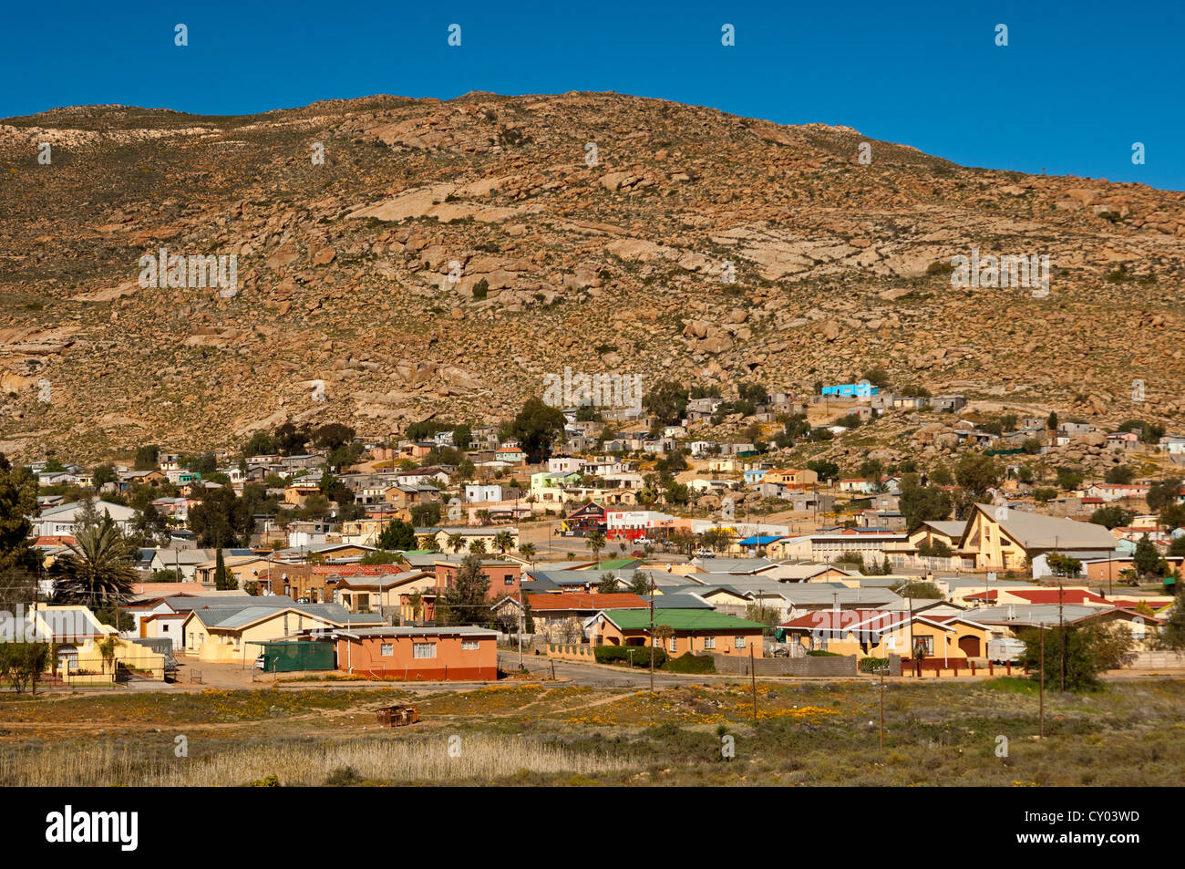Houses of springbok in front of the bare hills of for Outdoor photo south africa