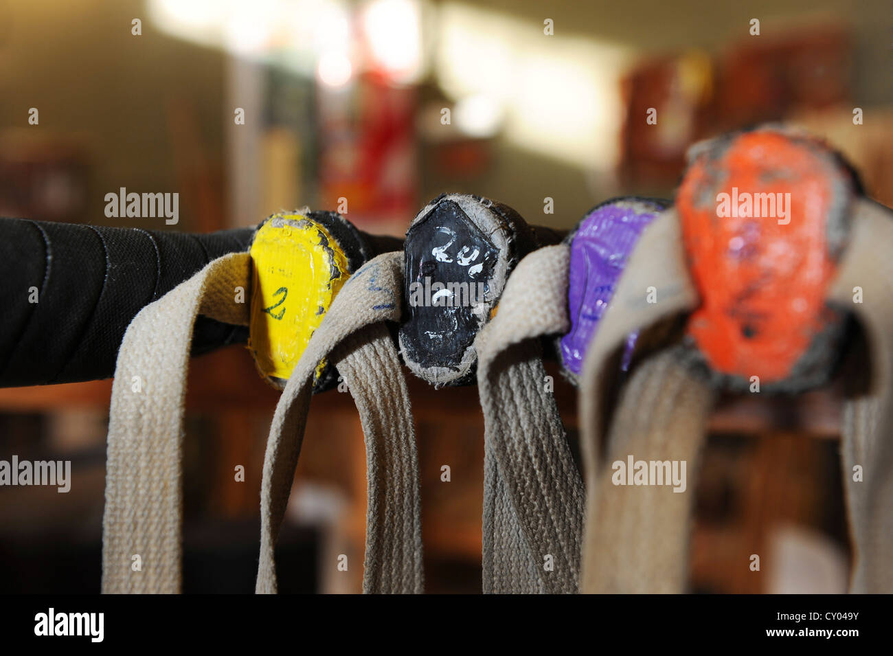 Colour coding for mallets at a polo factory, Zapala, Pilar, Argentina, South America - Stock Image