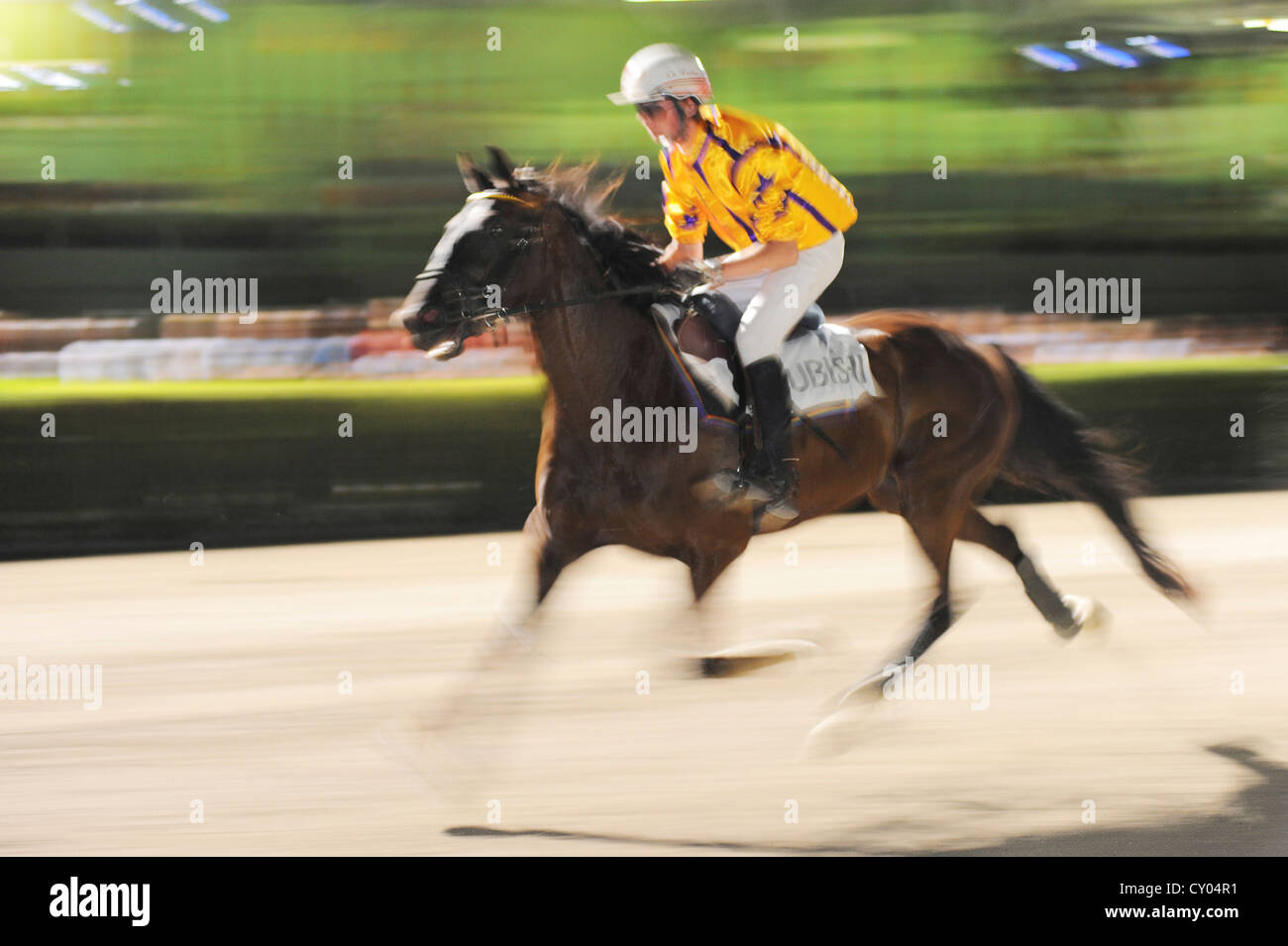 A horse race for amateurs, harness racing track, Baden, Lower Austria, Austria, Europe - Stock Image