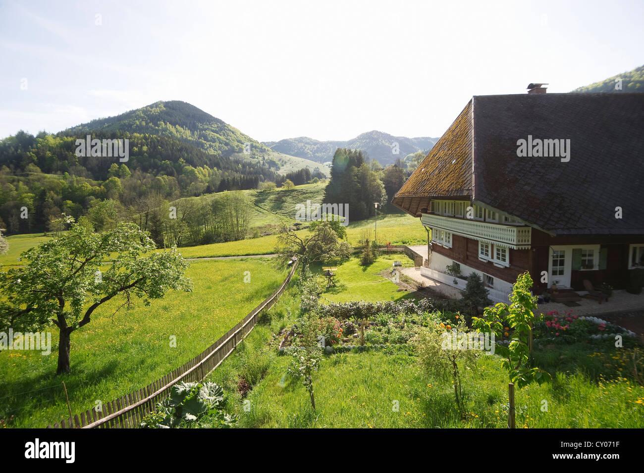 Old Black Forest farmhouse, Praeg near Todtnau, Black Forest, Baden-Wuerttemberg Stock Photo