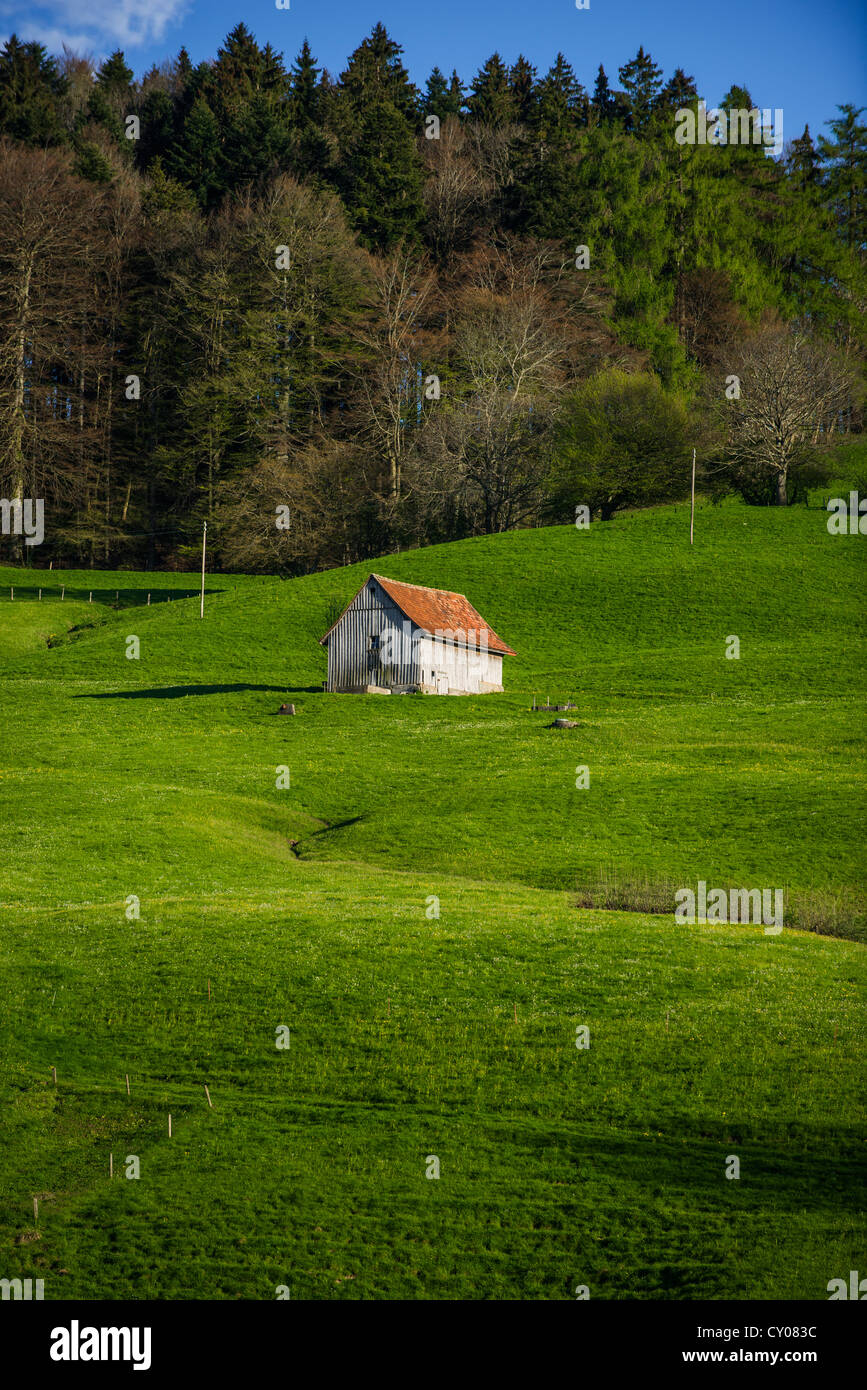 Hut in a lush meadow at Scheitlingsbuechel, St. Gallen, Switzerland, Europe - Stock Image