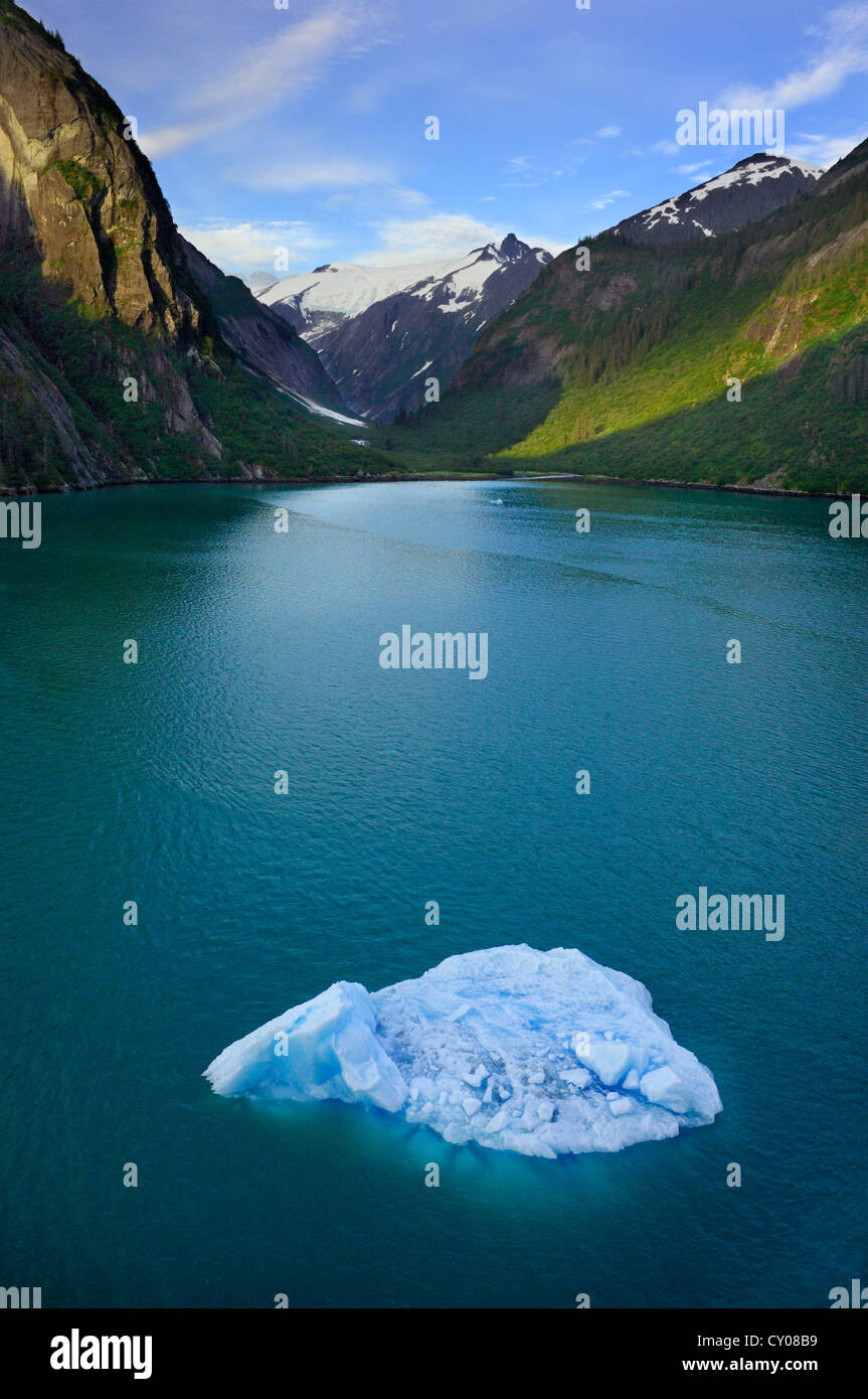 Ice floating in the Tracy Arm Fjord, Tongass National Forest, Alaska, USA - Stock Image