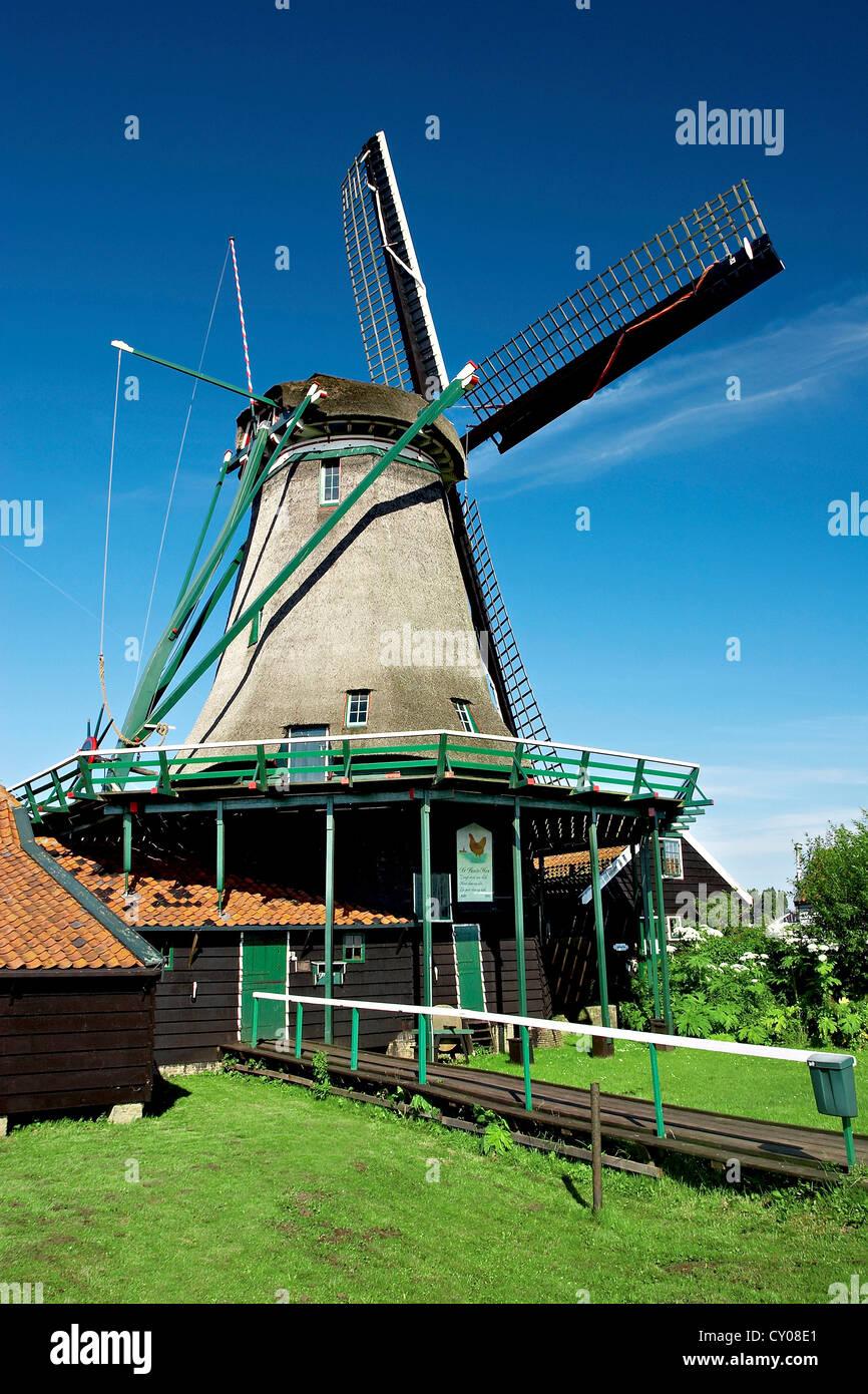 Netherlands, North Holland, Zaanstad, Zaanse Schans, windmills. - Stock Image