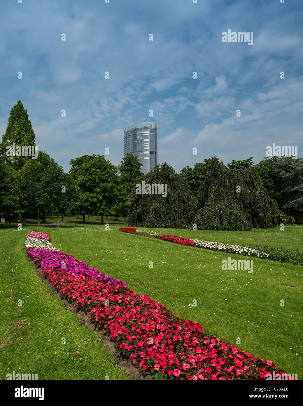 View from the leisure park to the Posttower, Bonn, North Rhine-Westphalia - Stock Image