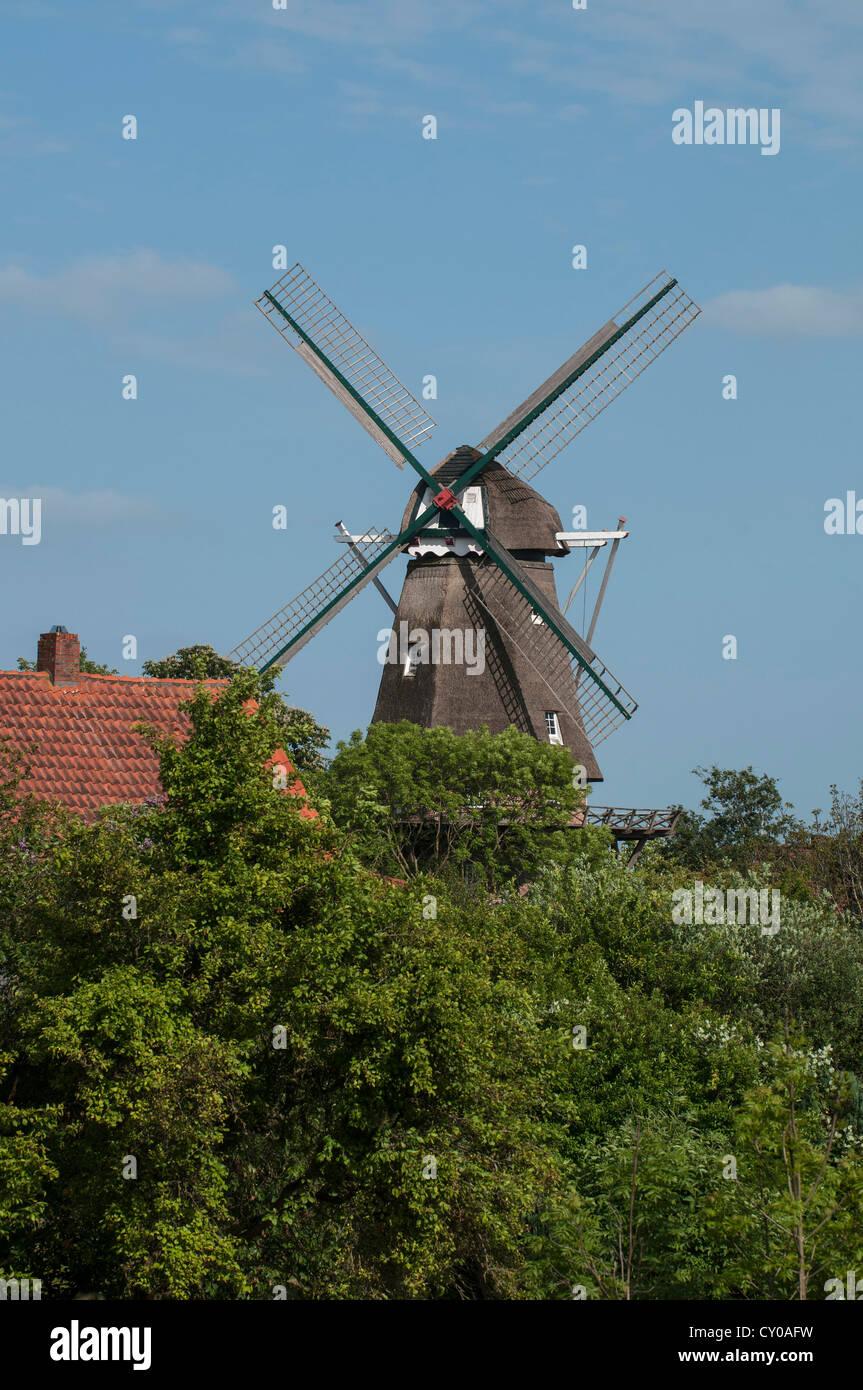 Historic 'Hinte' windmill, three storey Dutch style, East Frisia, Lower Saxony - Stock Image