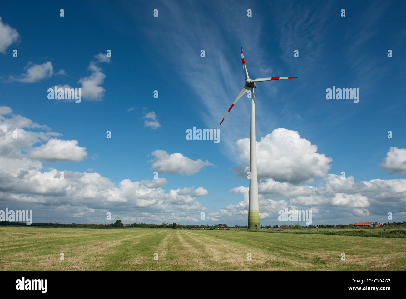 Wind turbine on agricultural land, renewable energy, wind energy, East Frisia, Lower Saxony, PublicGround - Stock Image