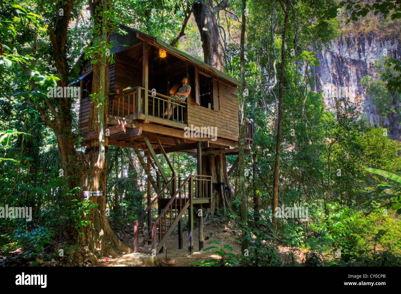 TREE HOUSES are the specialty of OUR JUNGLE HOUSE a lodge near KHAO SOK NATIONAL PARK - SURATHANI PROVENCE, THAILAND - Stock Image