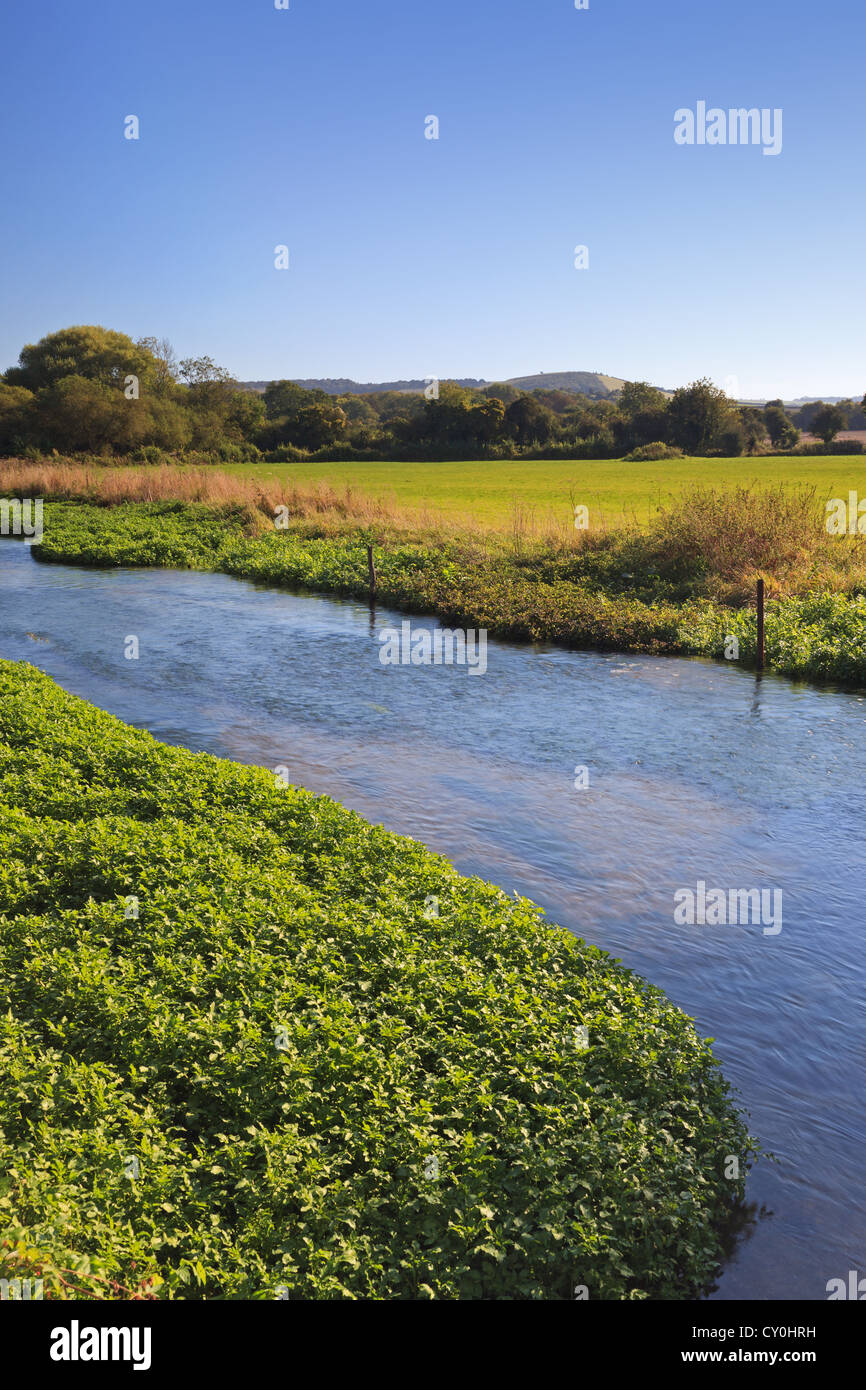 The River Meon at Exton in Hampshire England with Old Winchester Hill in the distance. - Stock Image