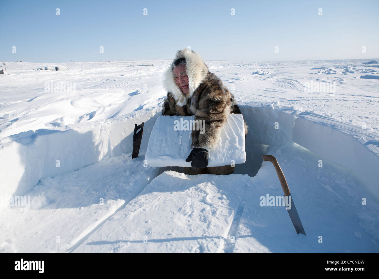 building an iglo on the north pole - Stock Image