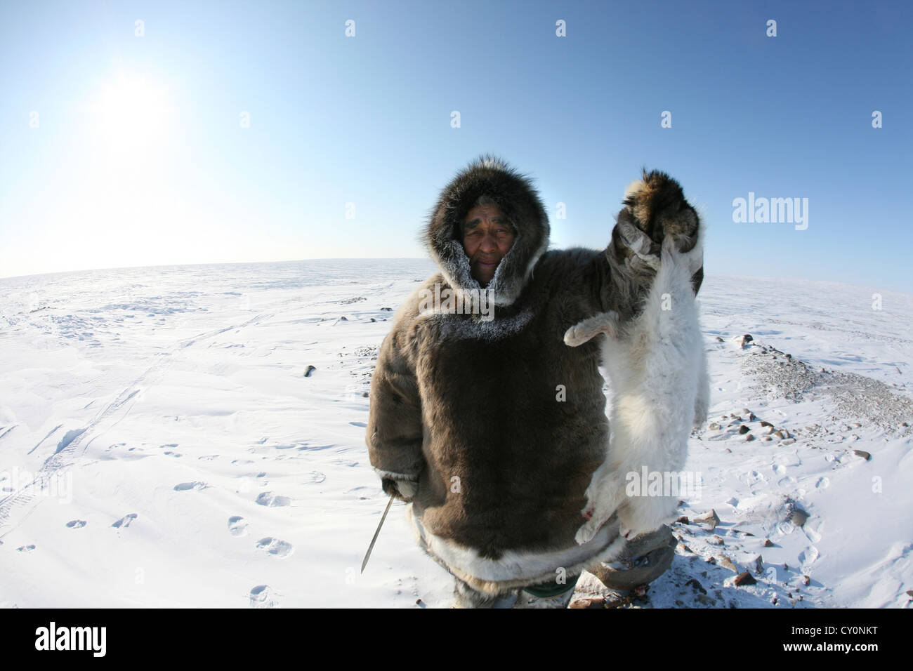 Inuits are hunting on the northpole - Stock Image