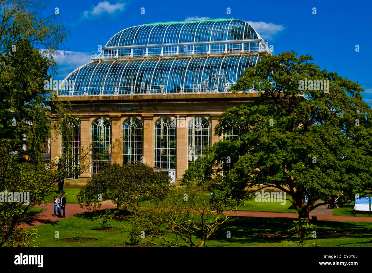 Temperate palm house at Royal Botanic Gardens Edinburgh - Stock Image