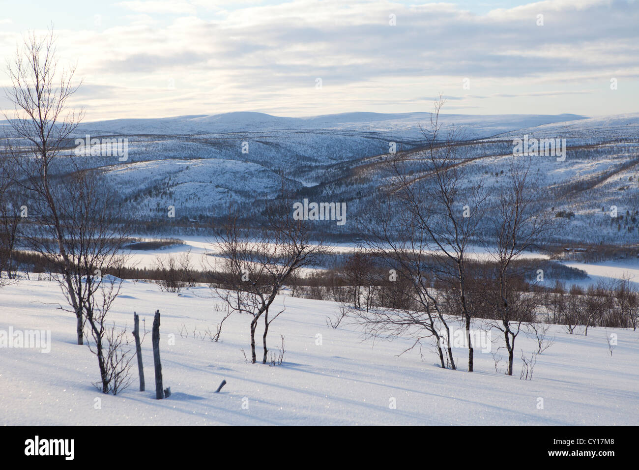 landscape of Northern Finland - Stock Image