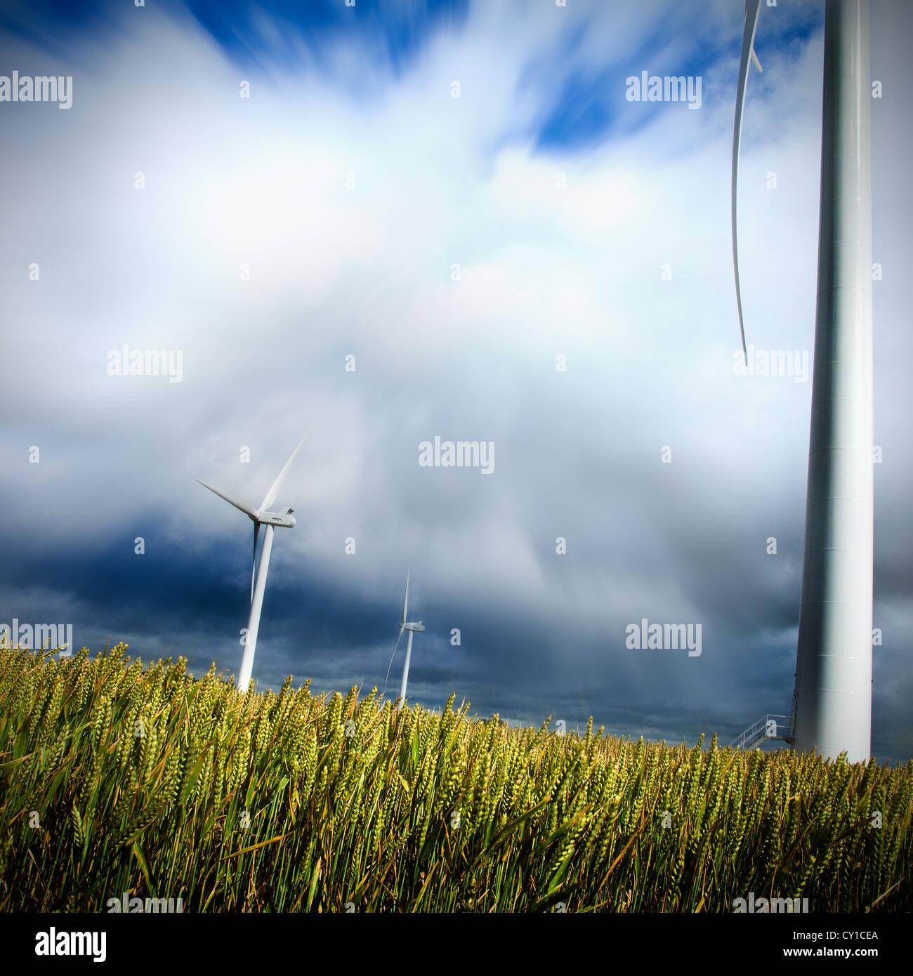 Wind Farm in Market Weighton England Renewable energy - Stock Image