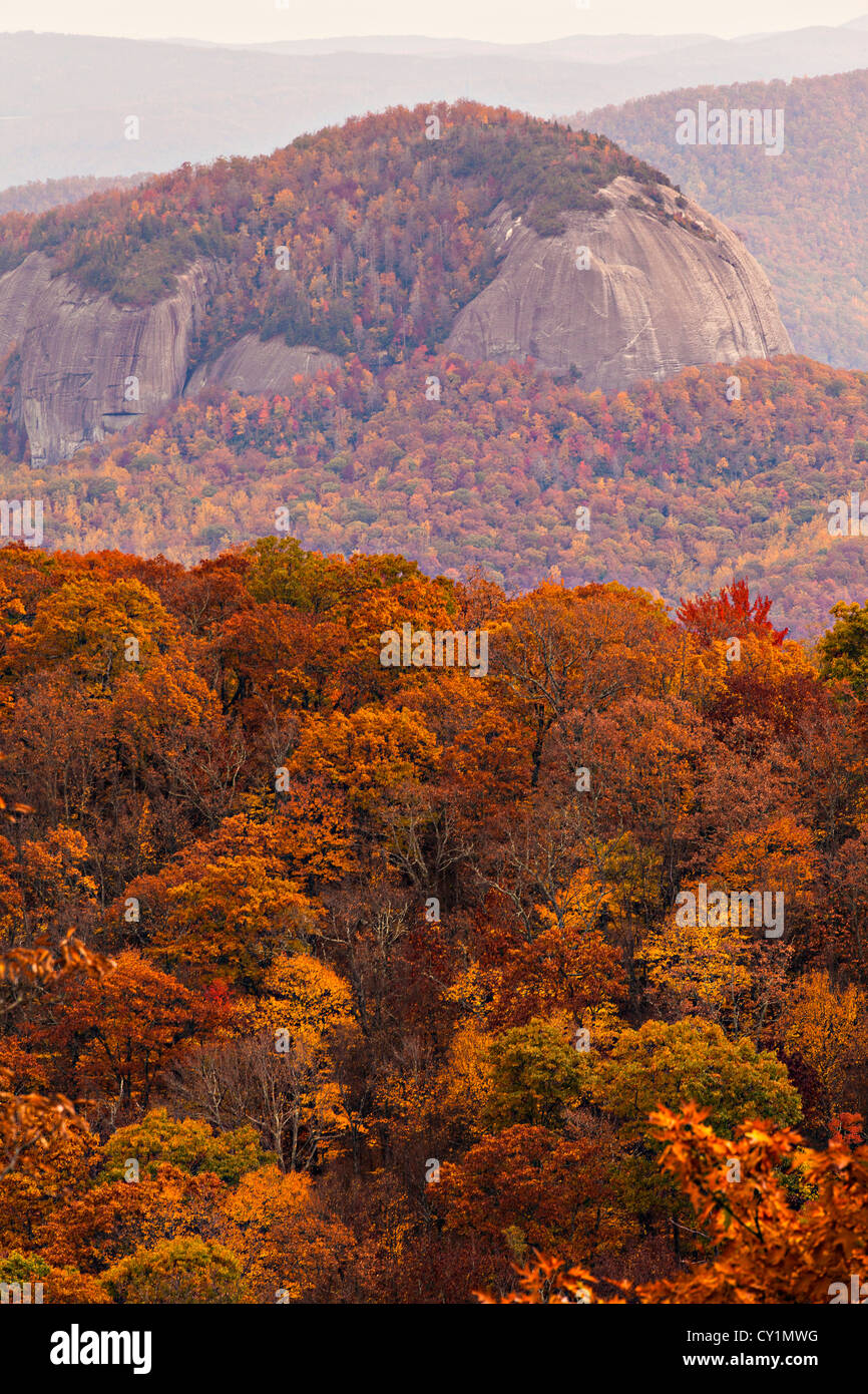 colorful autumn foliage as leaves change colors along the blue ridge