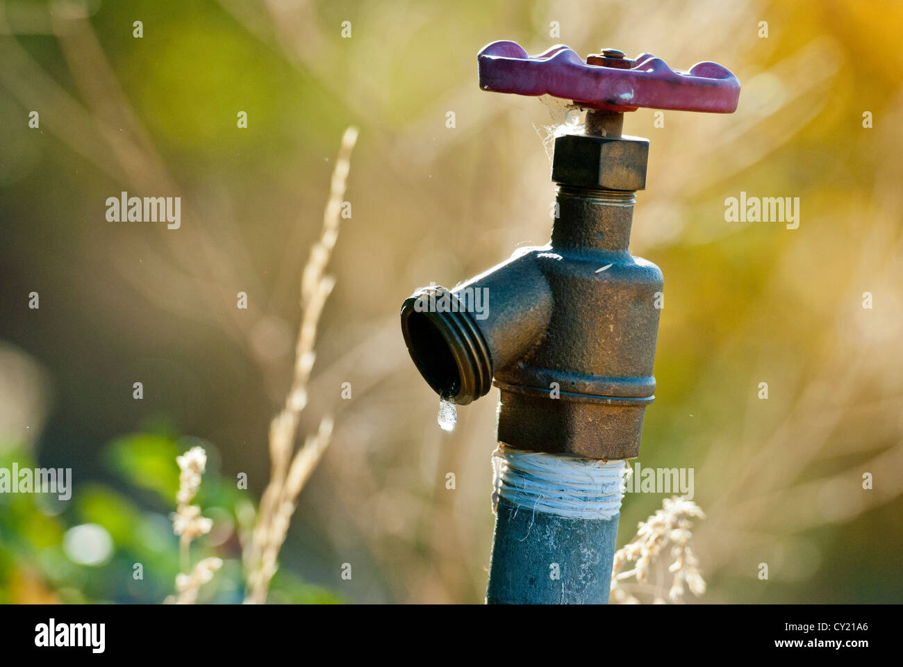 Spigot with water drop - Stock Image