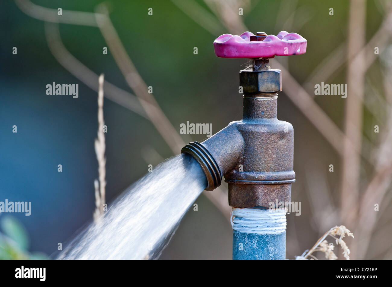 Water flowing from spigot - Stock Image