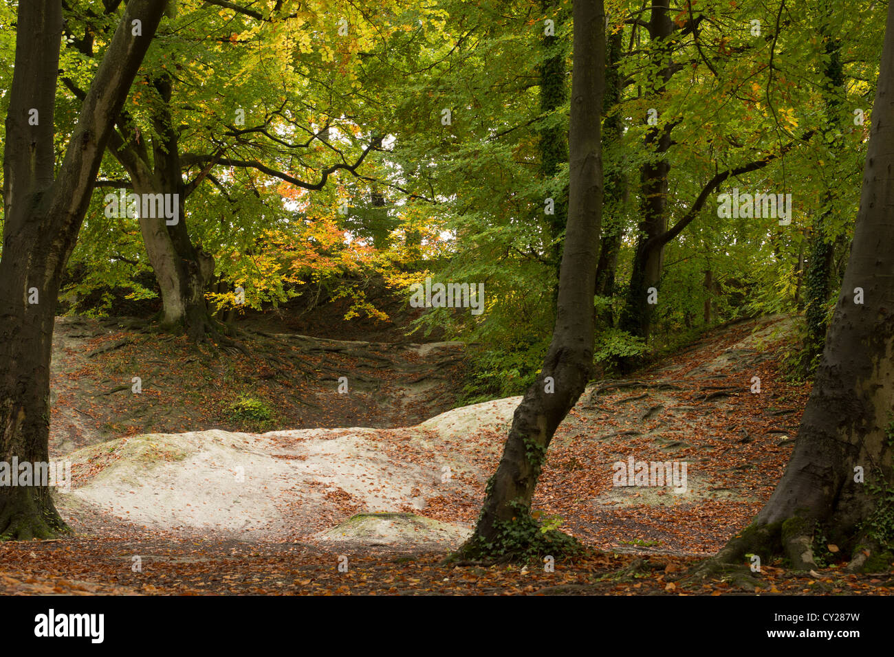 Autumn at Barton Springs, Bedfordshire - Stock Image
