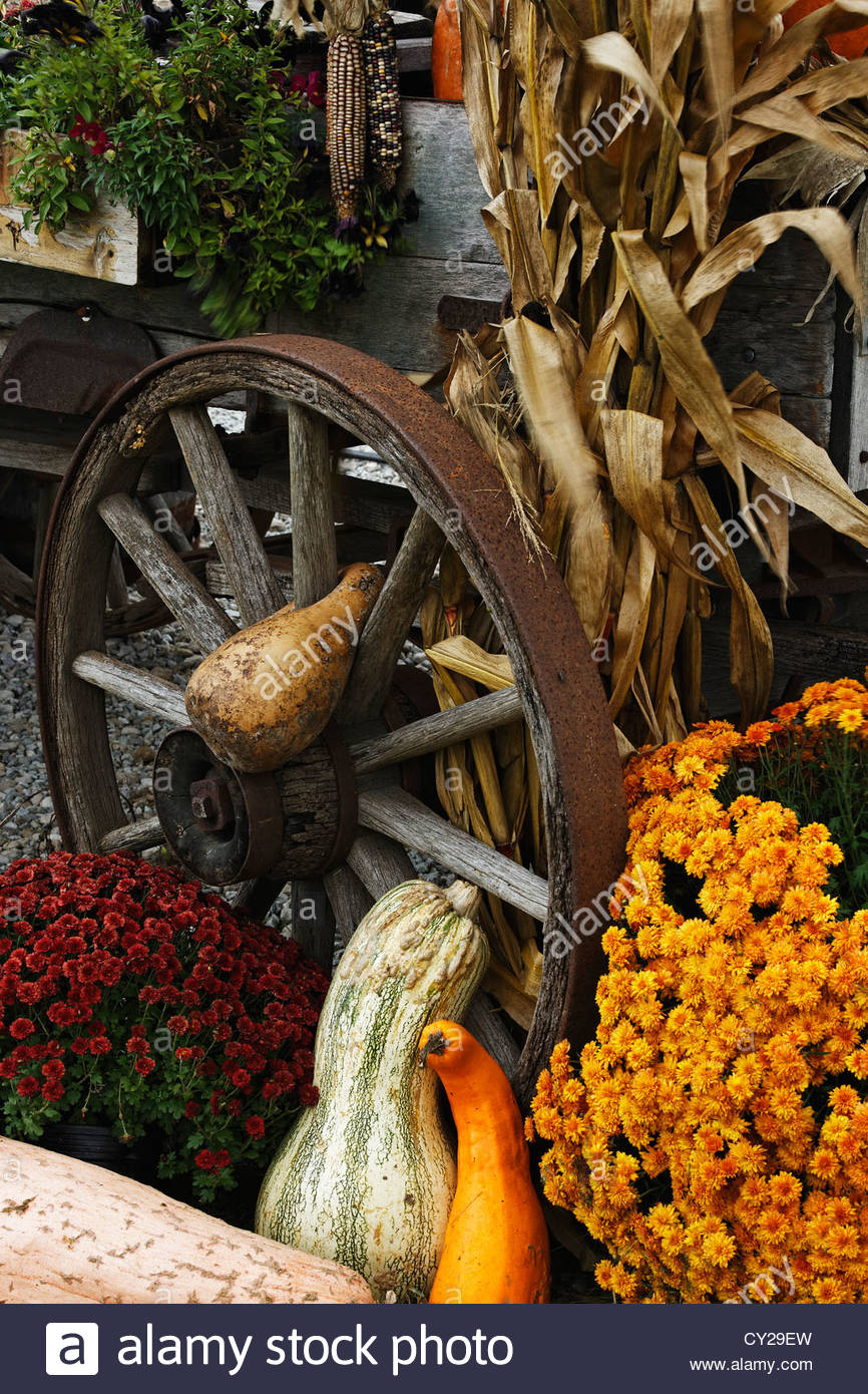 Old Wagon Wheel With Autumn Decorations Stock Photo 51067825 Alamy
