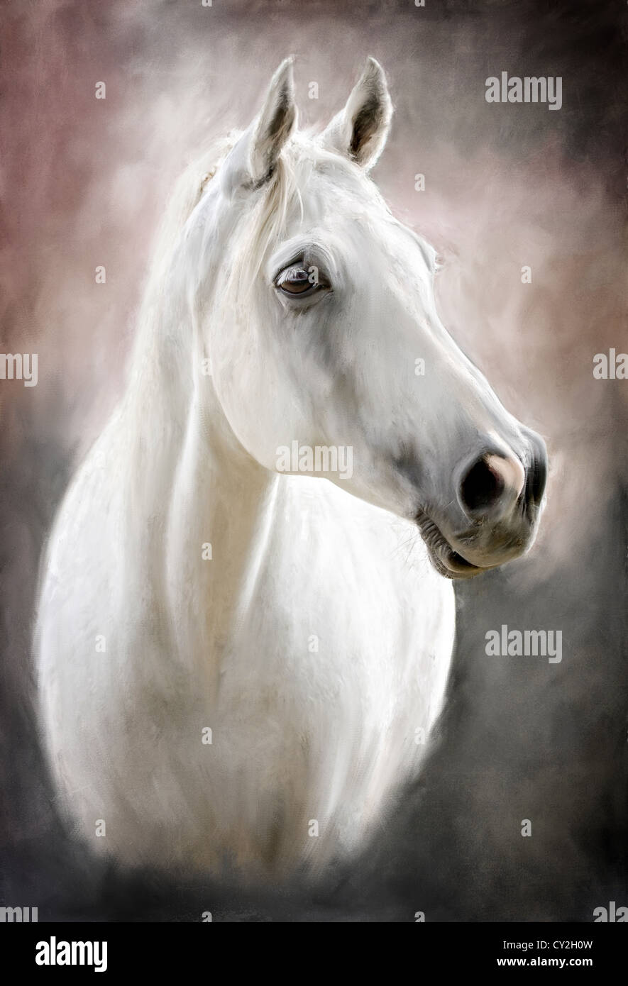Horse Head Oil Painting High Resolution Stock Photography And Images Alamy