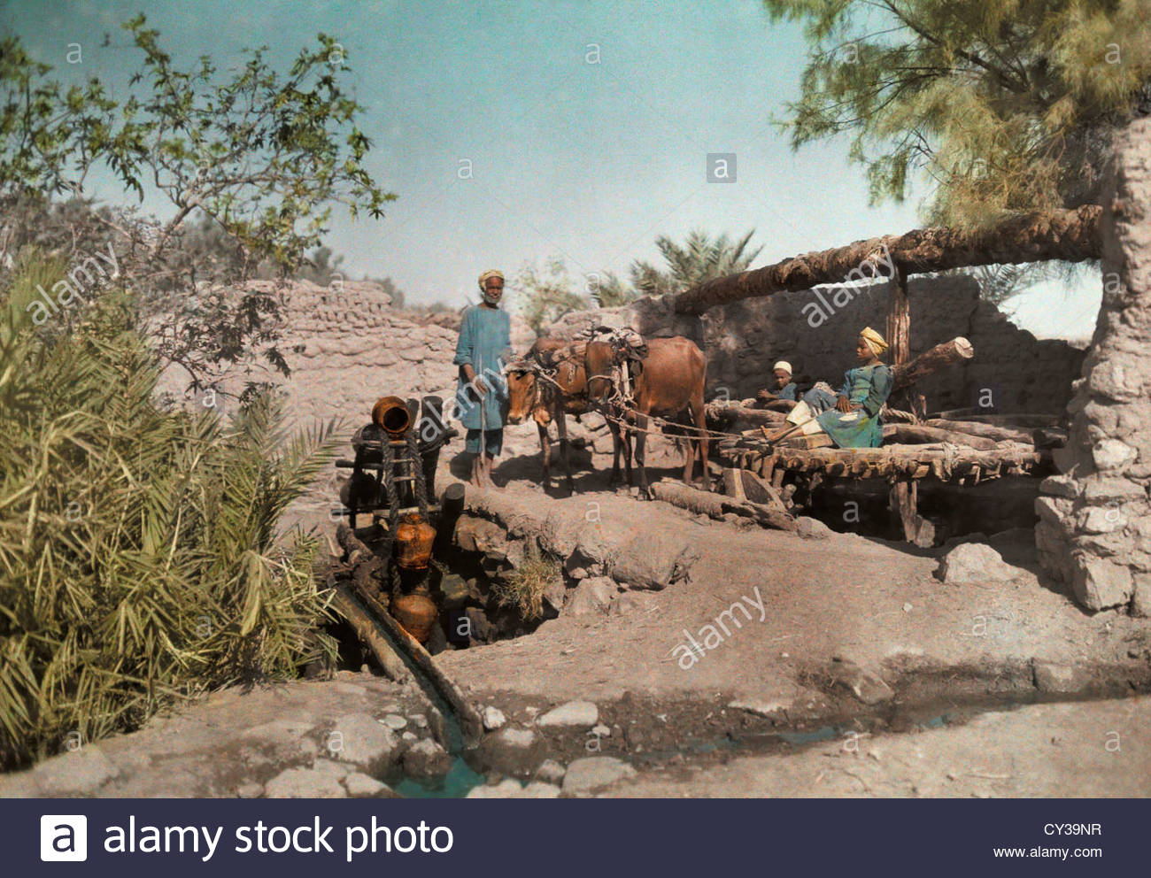 Men clean out the stagnant water with a water-scoop wheel. Stock Photo
