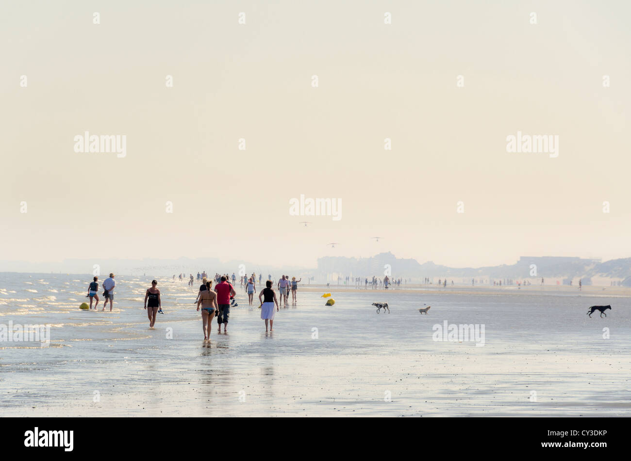 Dunkirk beach, Northern France - Stock Image