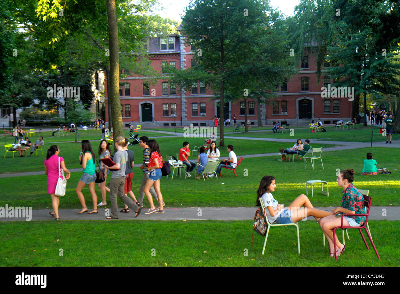 Boston Massachusetts Cambridge Harvard University campus Harvard Yard teen boy girl student chairs sitting Grays - Stock Image