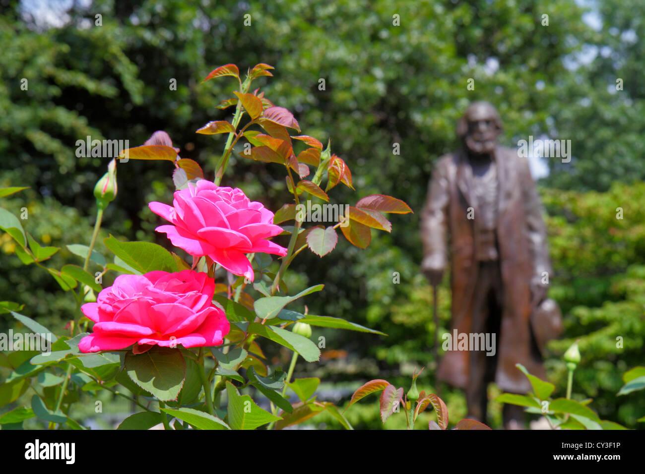 Boston Massachusetts Boston Public Garden rose flower Edward Everett Hale statue author historian Unitarian clergyman - Stock Image